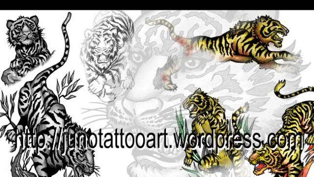 Tiger tattoos-animal tattoo